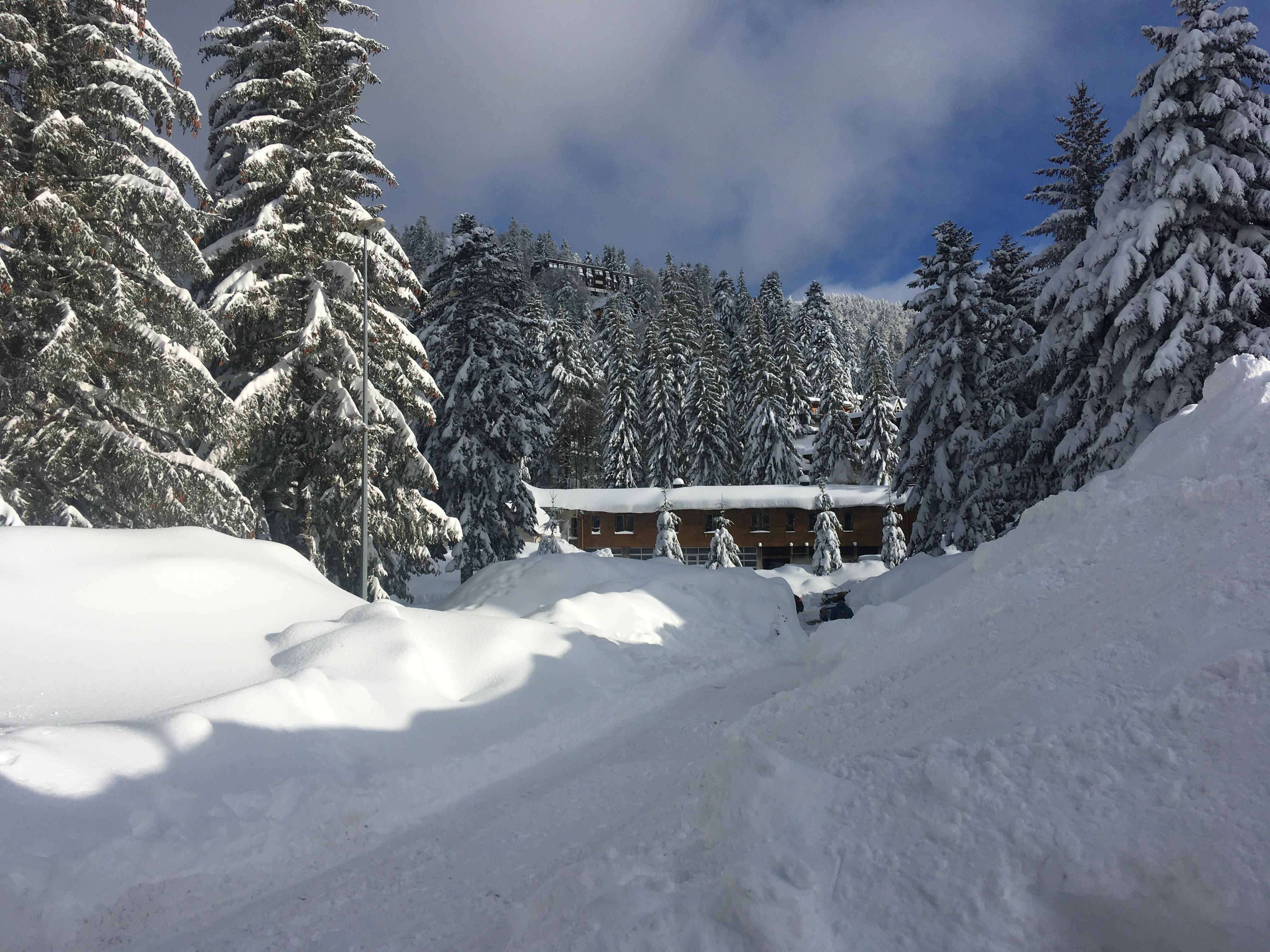 1318 le P2 transformé en réserve de neige