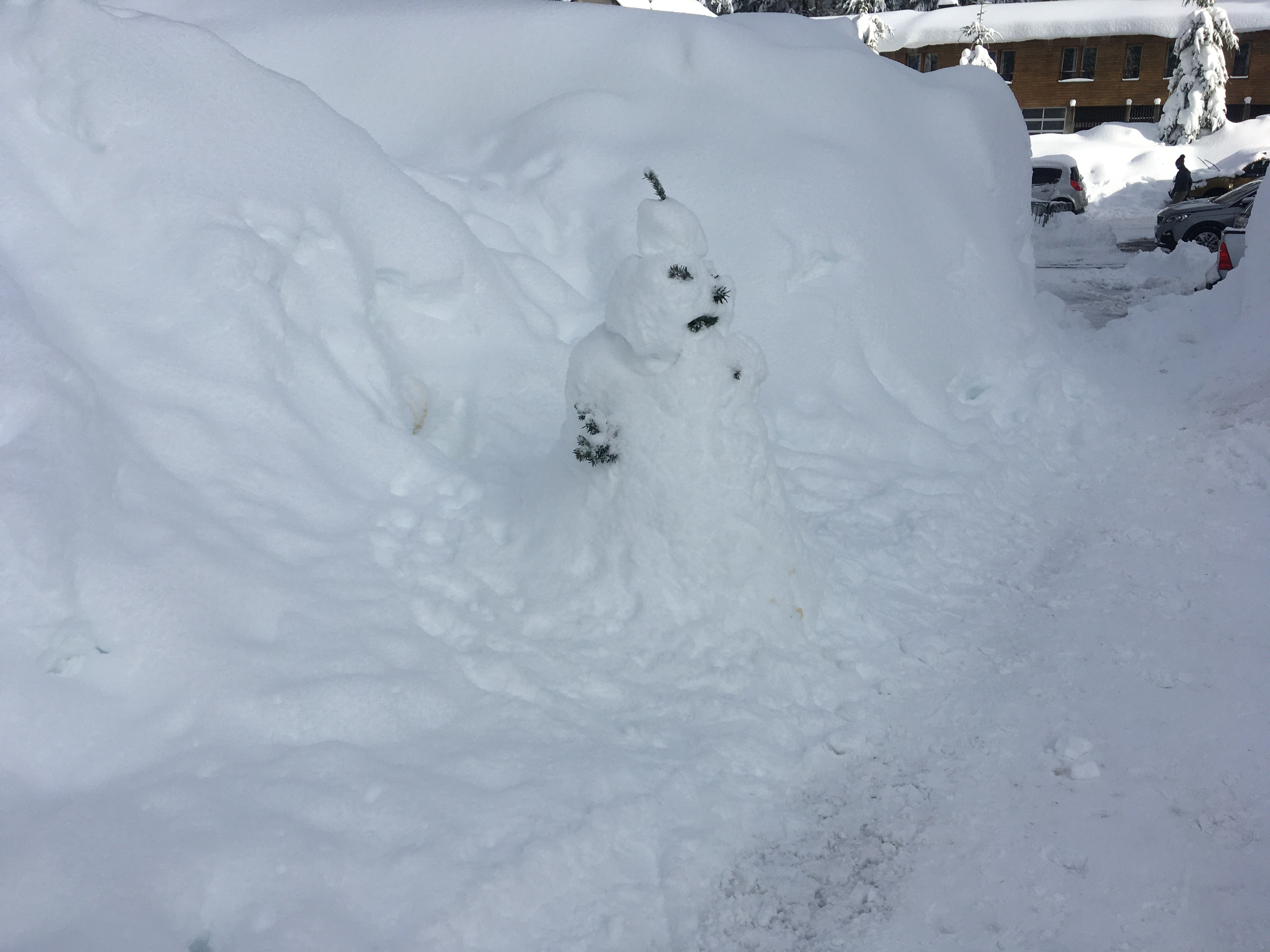 1313 le bonhomme de neige du 1er janvier